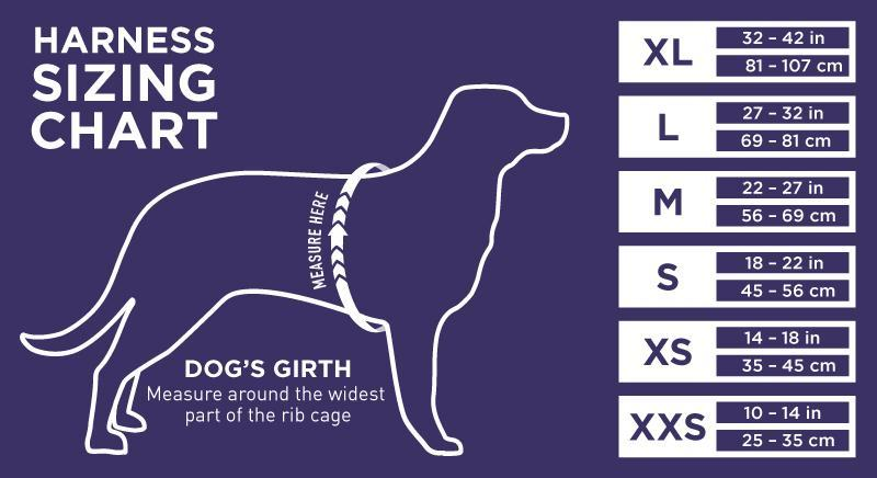 dog-sizing-charts-girth